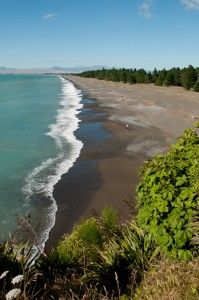 Rarangi Beach | Marlborough NZ