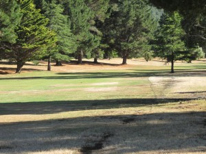 A dogleg right beyond the marker tree